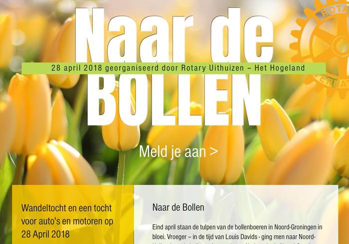 Wandeltocht Naar de Bollen - Colourful Het Hogeland